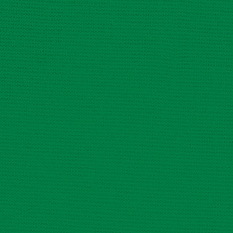 756x756 - Solid Green 9