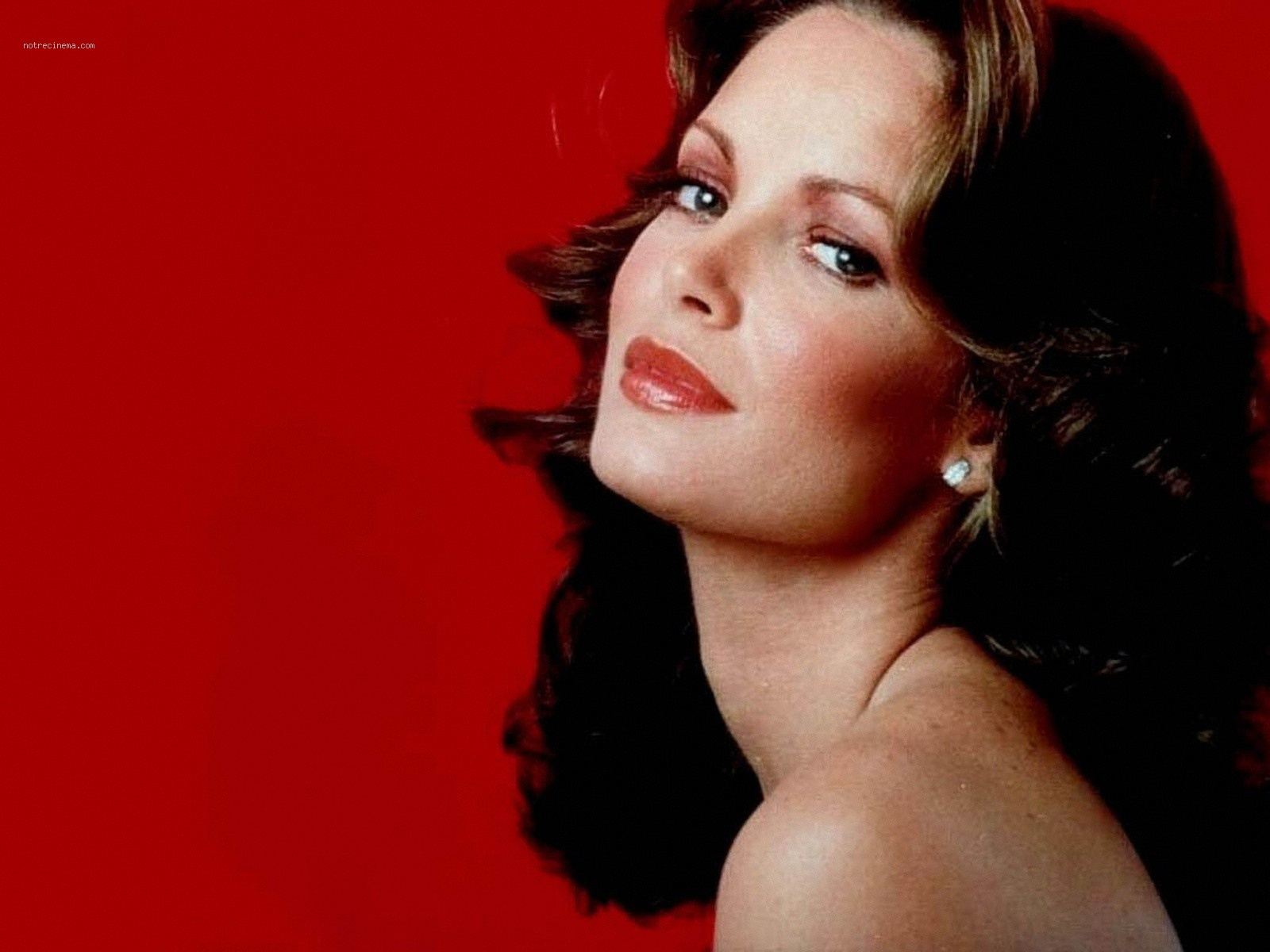1600x1200 - Jaclyn Smith Wallpapers 3