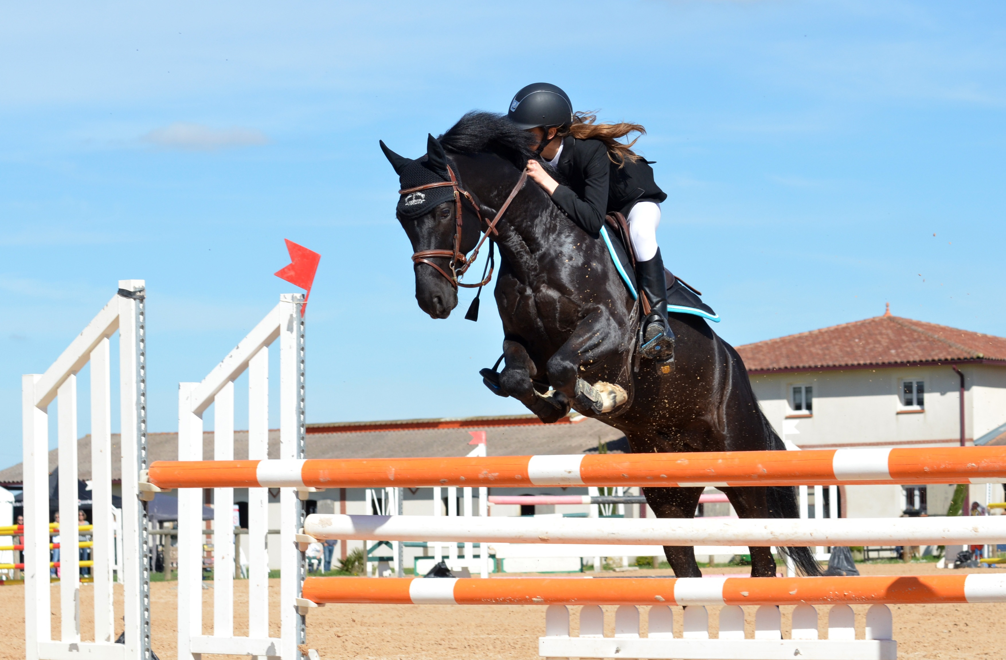 3510x2304 - Show Jumping Wallpapers 6