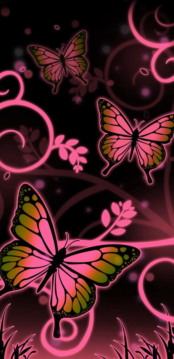 736x1512 - Pretty Butterfly Backgrounds 37