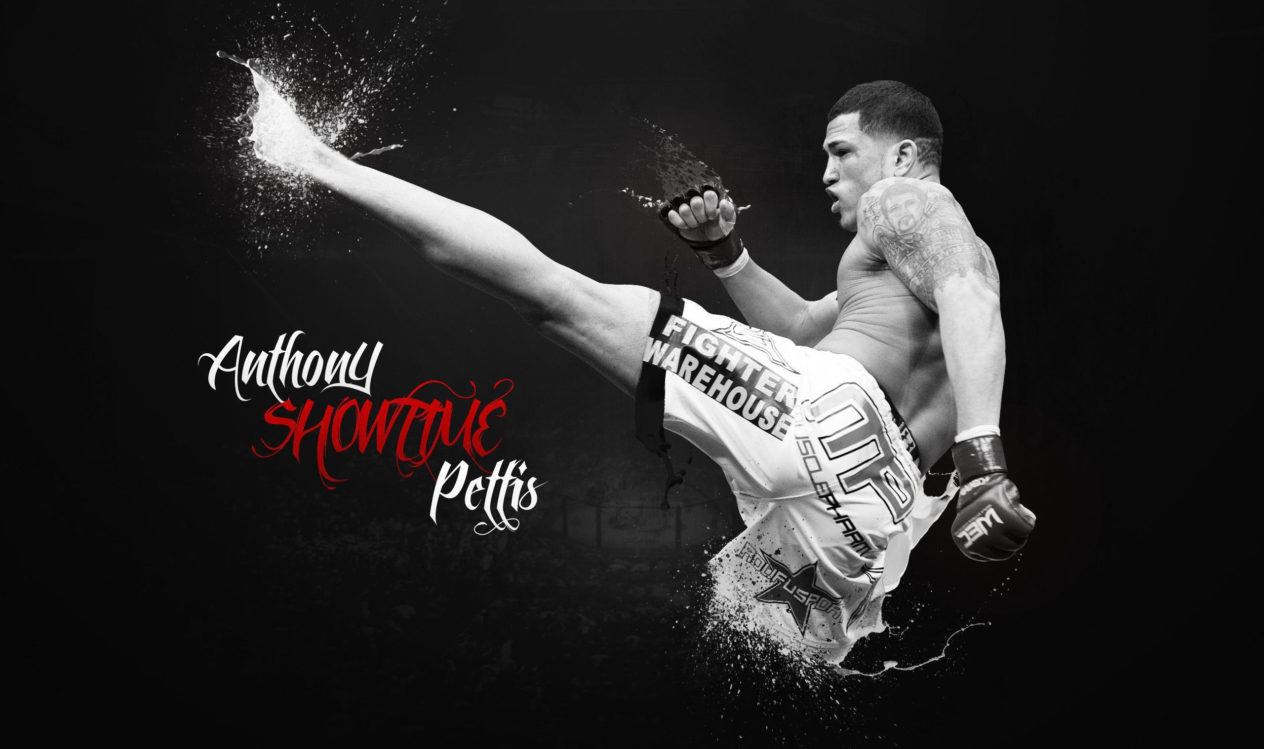 2560x1518 - Anthony Pettis Wallpapers 5