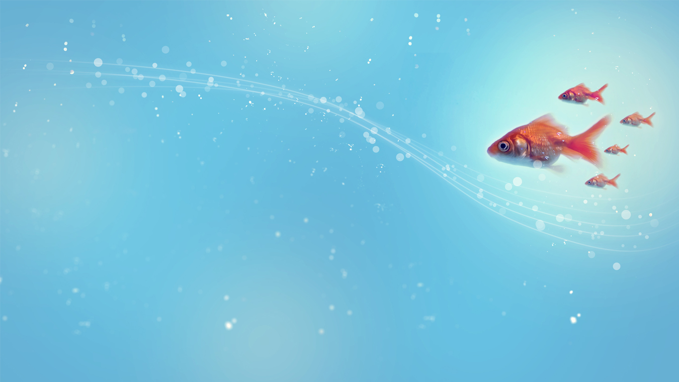 1366x768 - Blue Ocean Wallpaper with Fish 2