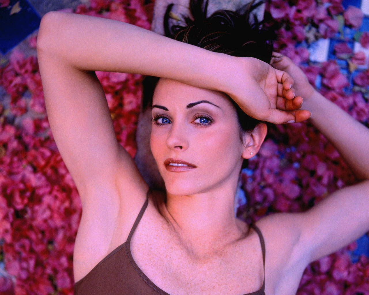 1280x1024 - Courtney Cox Wallpapers 24