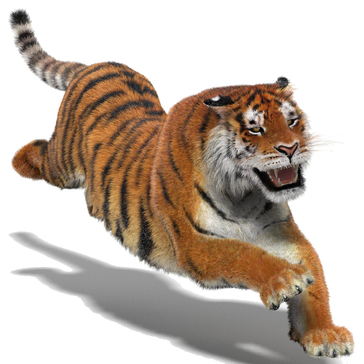 1200x1200 - Animated Tiger 17