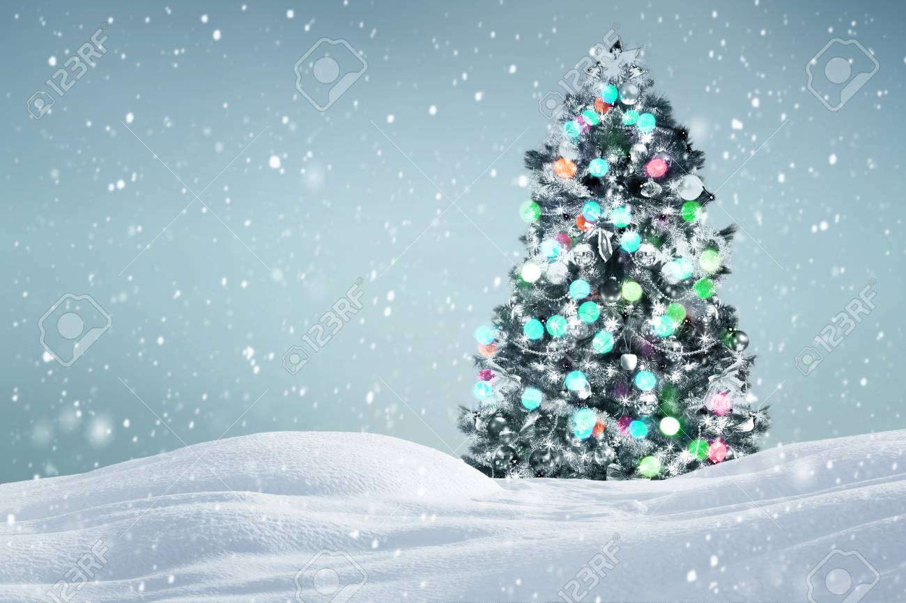 1300x866 - Christmas Trees Backgrounds 47