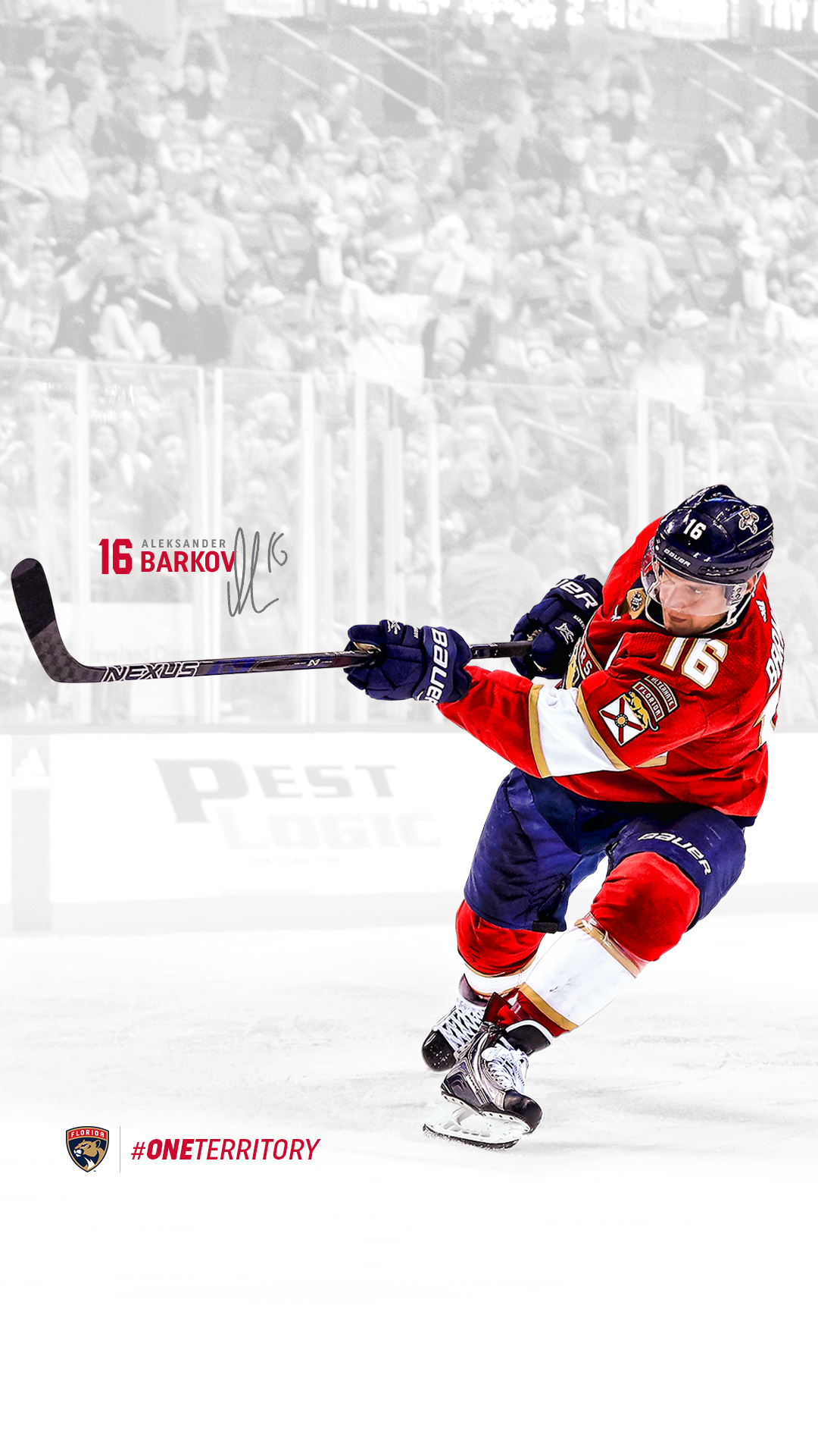 1080x1920 - Hockey Wallpapers 25