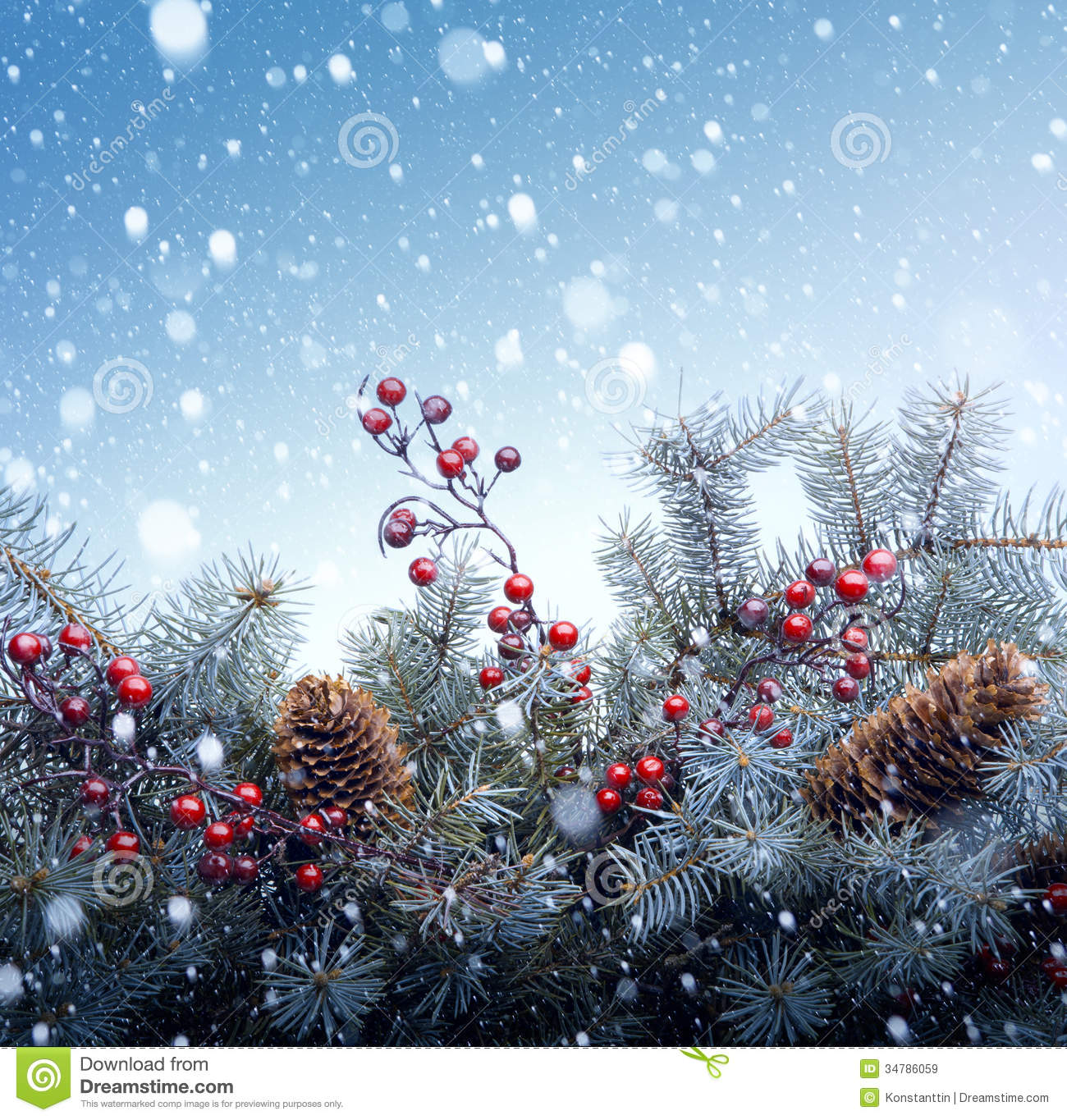 1300x1365 - Christmas Trees Backgrounds 12