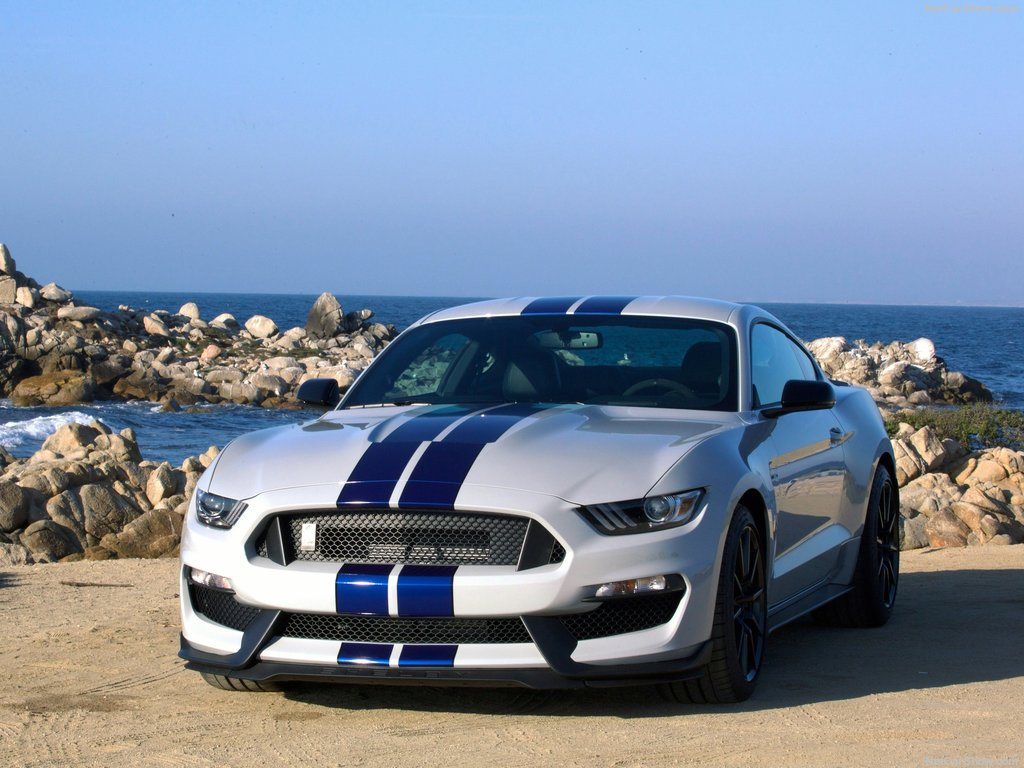 1024x768 - Shelby Mustang GT 350 Wallpapers 28