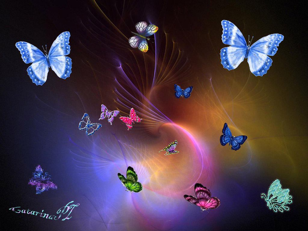 1024x768 - Pretty Butterfly Backgrounds 27