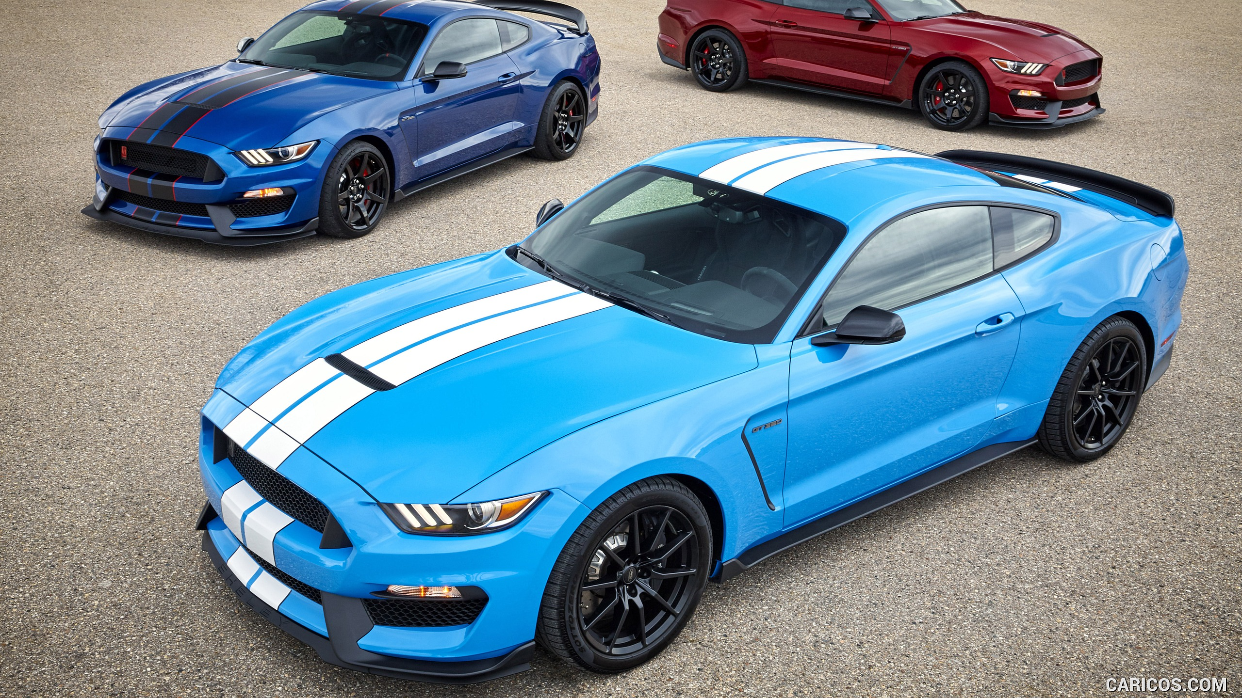 2560x1440 - Shelby Mustang GT 350 Wallpapers 24