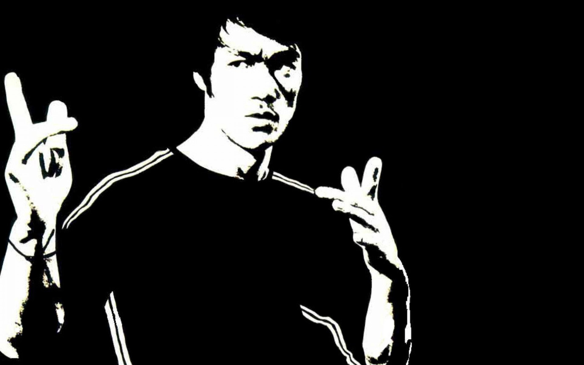 1920x1200 - Bruce Lee Wallpapers 2