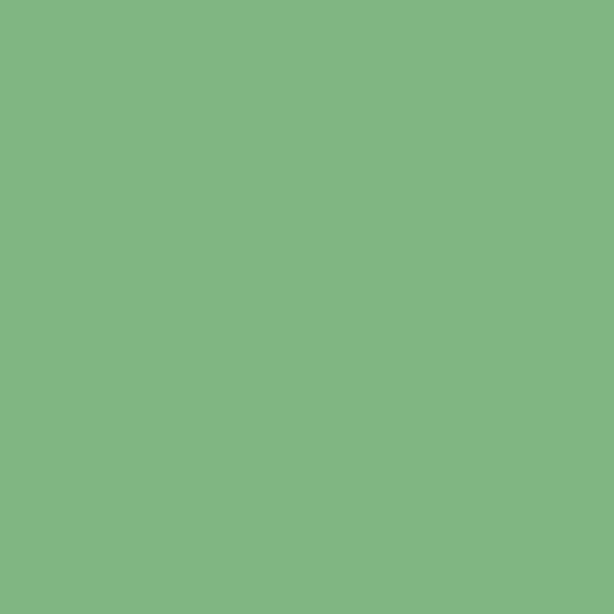 1200x1200 - Solid Green 3