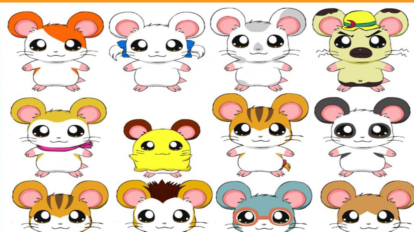 1366x768 - Hamtaro Background 25