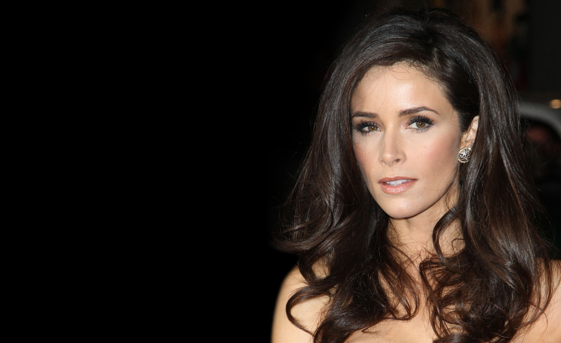 1920x1176 - Abigail Spencer Wallpapers 8