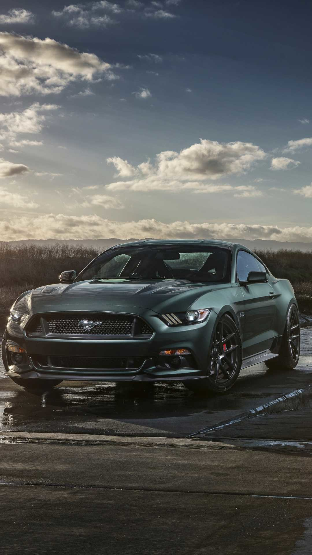 1080x1920 - Ford Mustang GT Wallpapers 22
