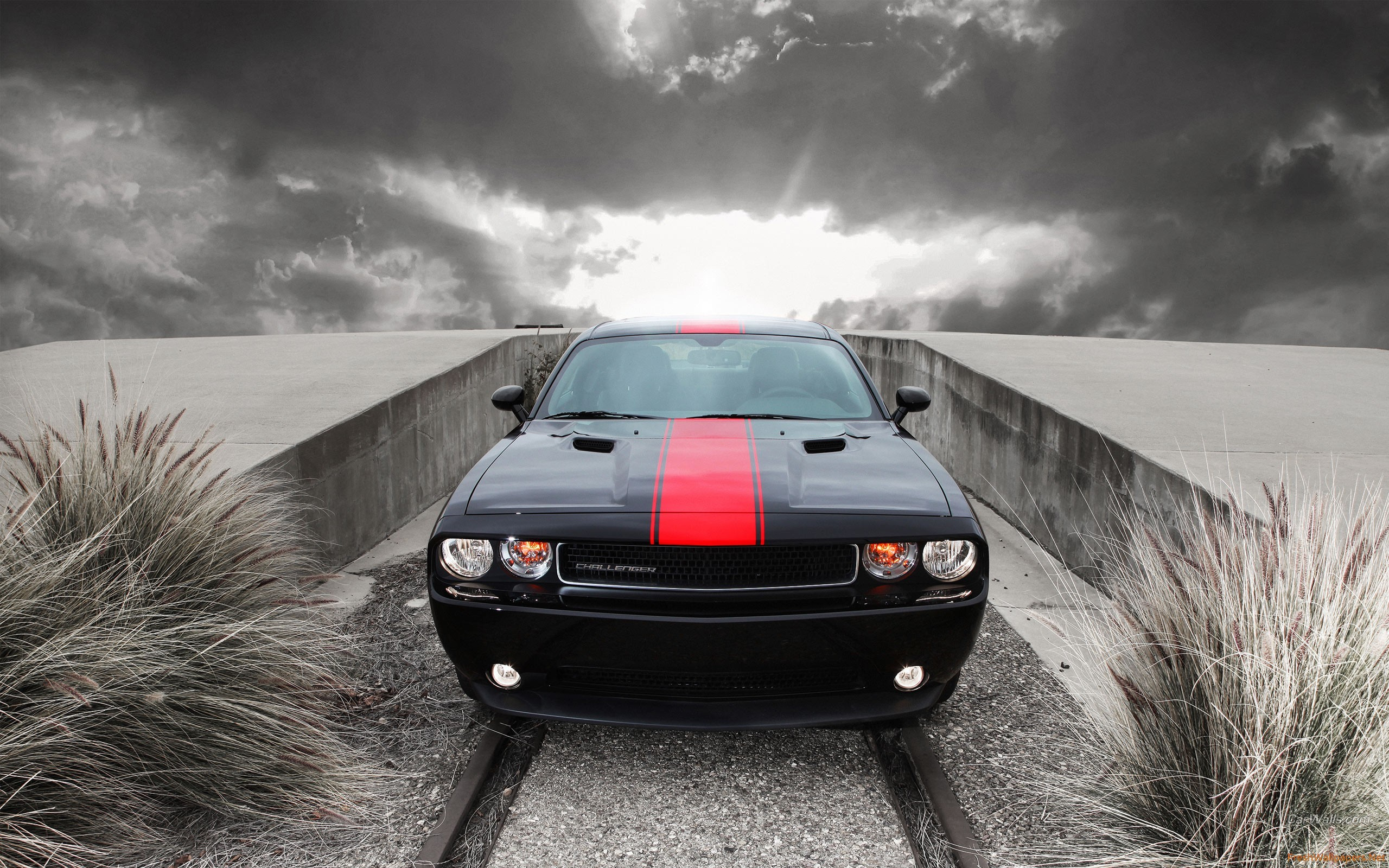 2560x1600 - Dodge Challenger Rallye Wallpapers 34