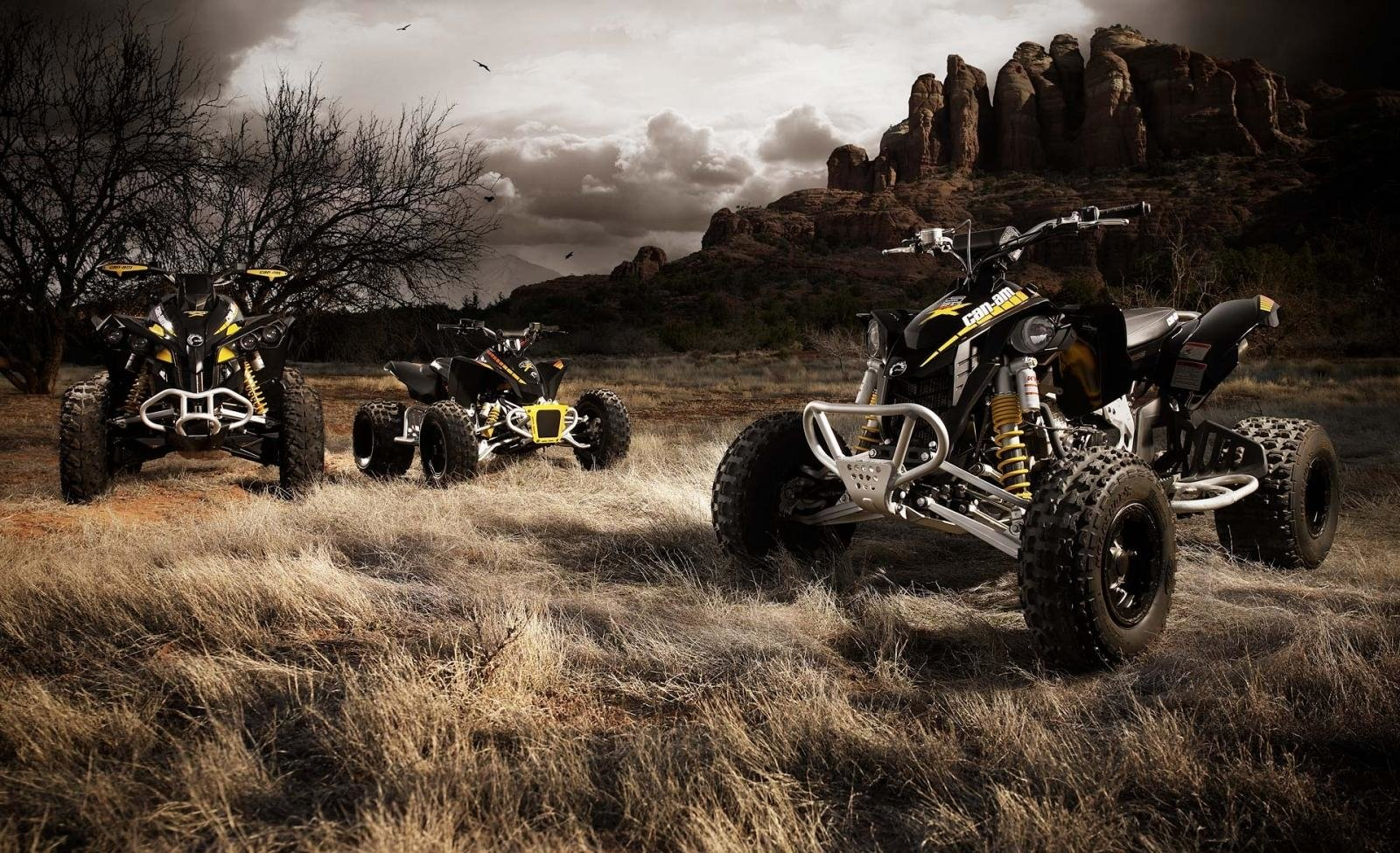 1600x975 - Can-Am Wallpapers 2