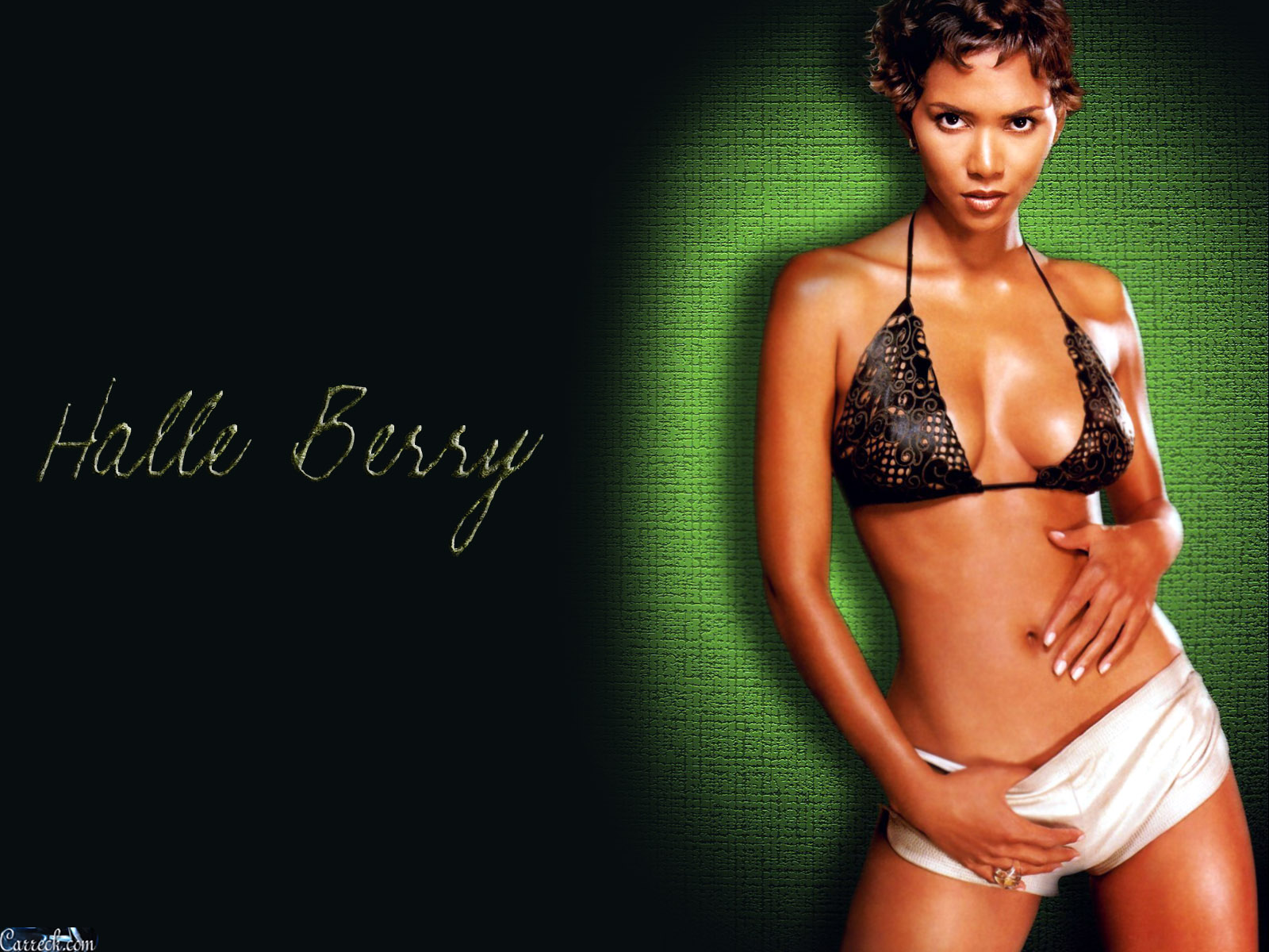 1600x1200 - Halle Berry Wallpapers 35