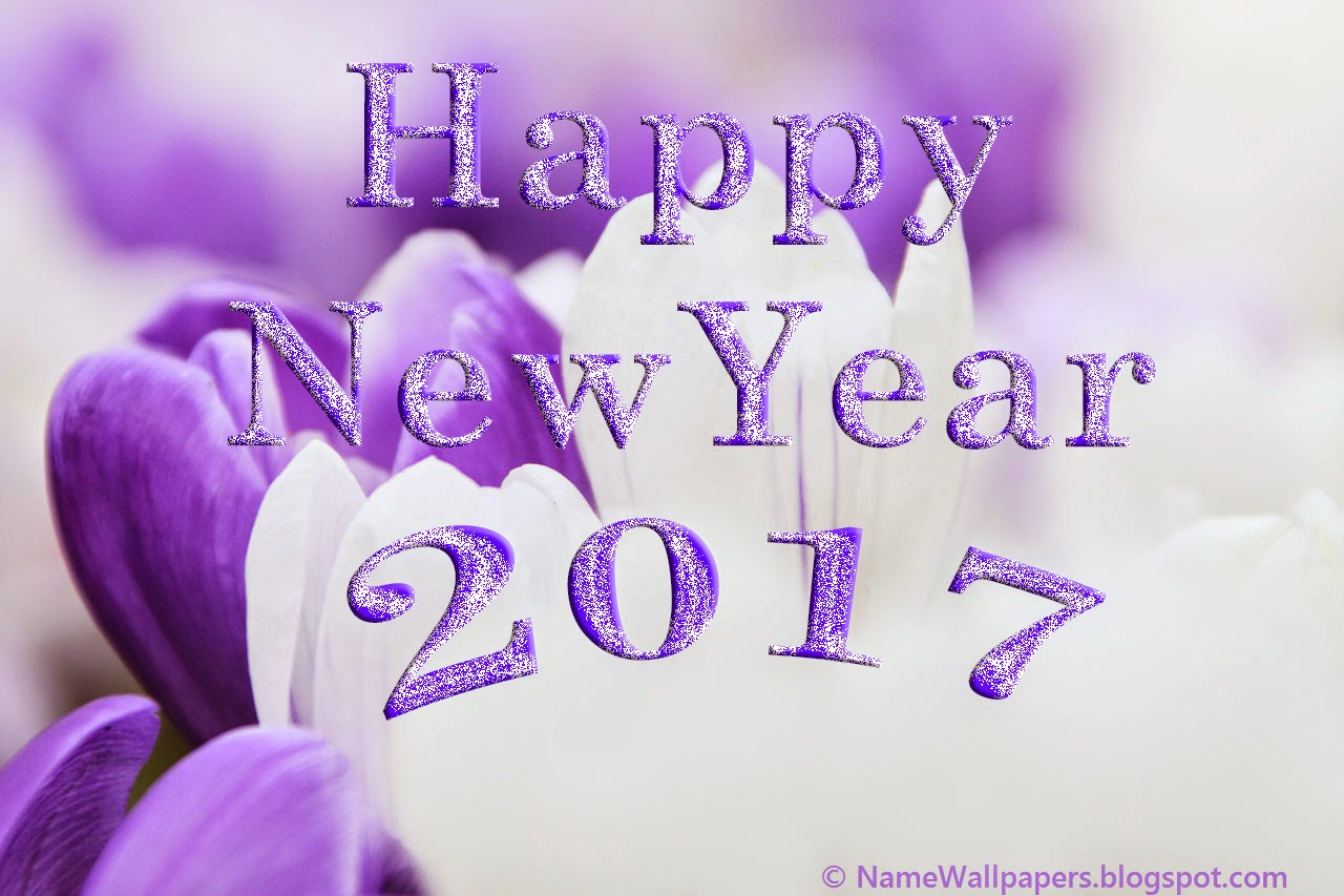 New Year 2017 Wallpapers (39 images) - DodoWallpaper.