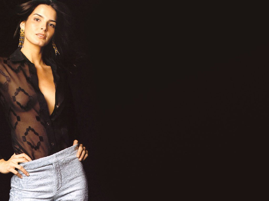 1024x768 - Angie Harmon Wallpapers 5