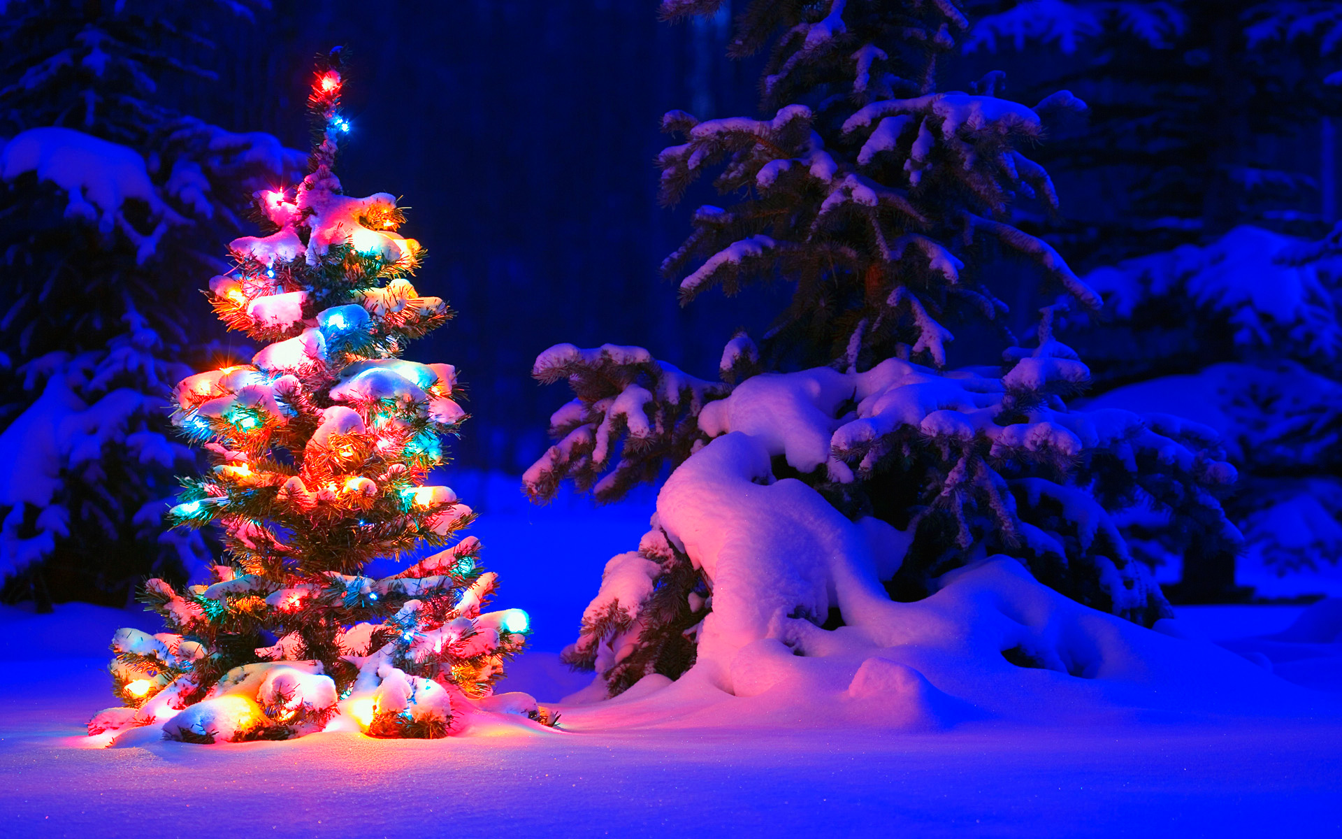 1920x1200 - Wallpaper for Christmas 44