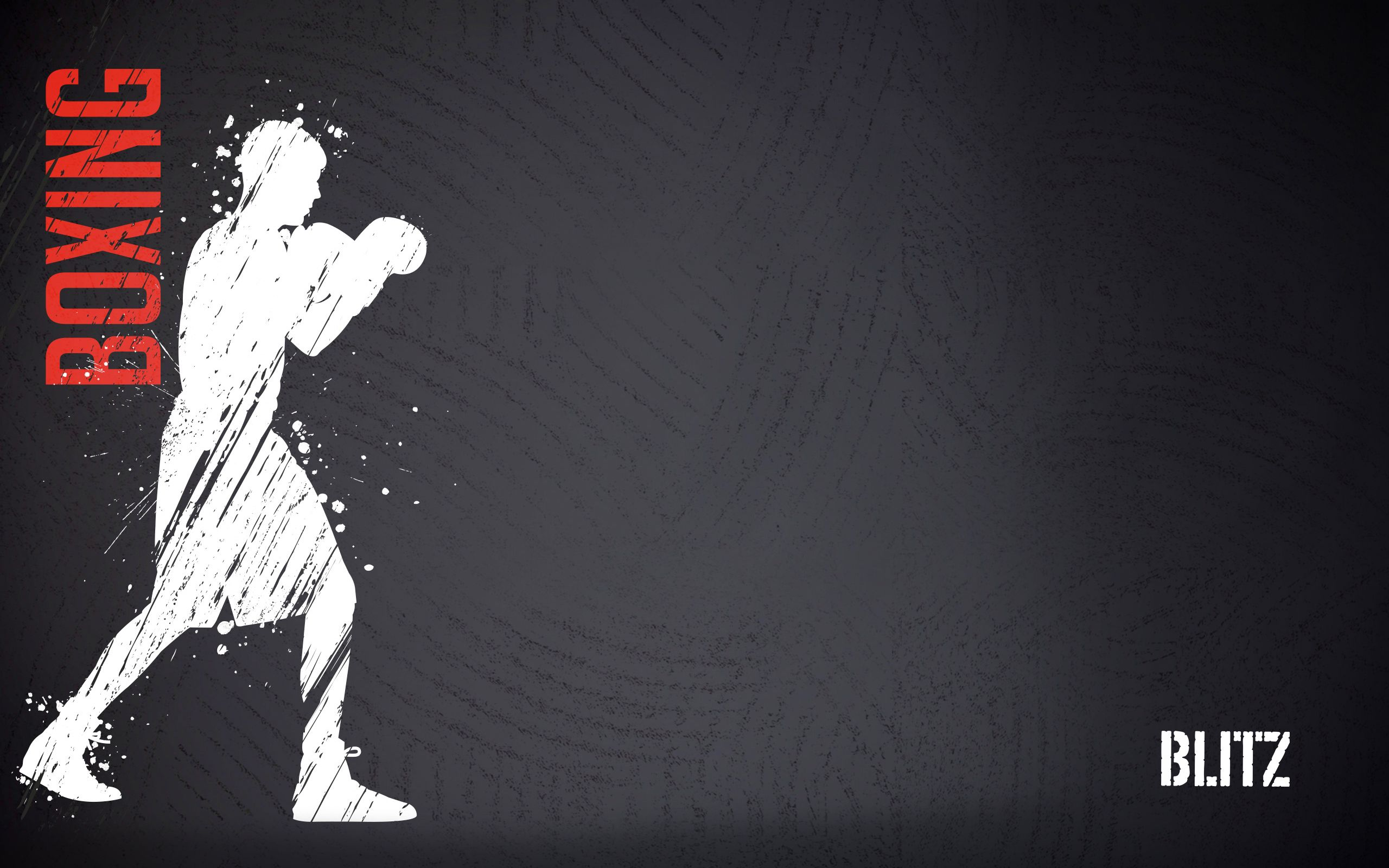 2560x1600 - Boxing Wallpapers 17