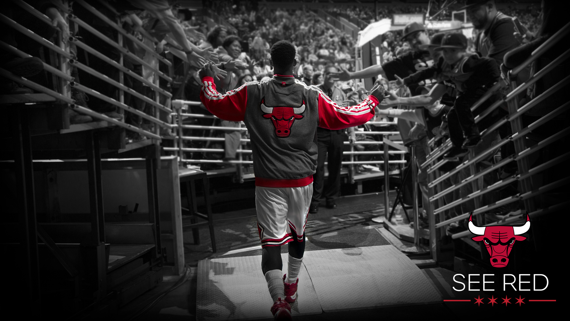 1920x1080 - Chicago Bulls HD 45