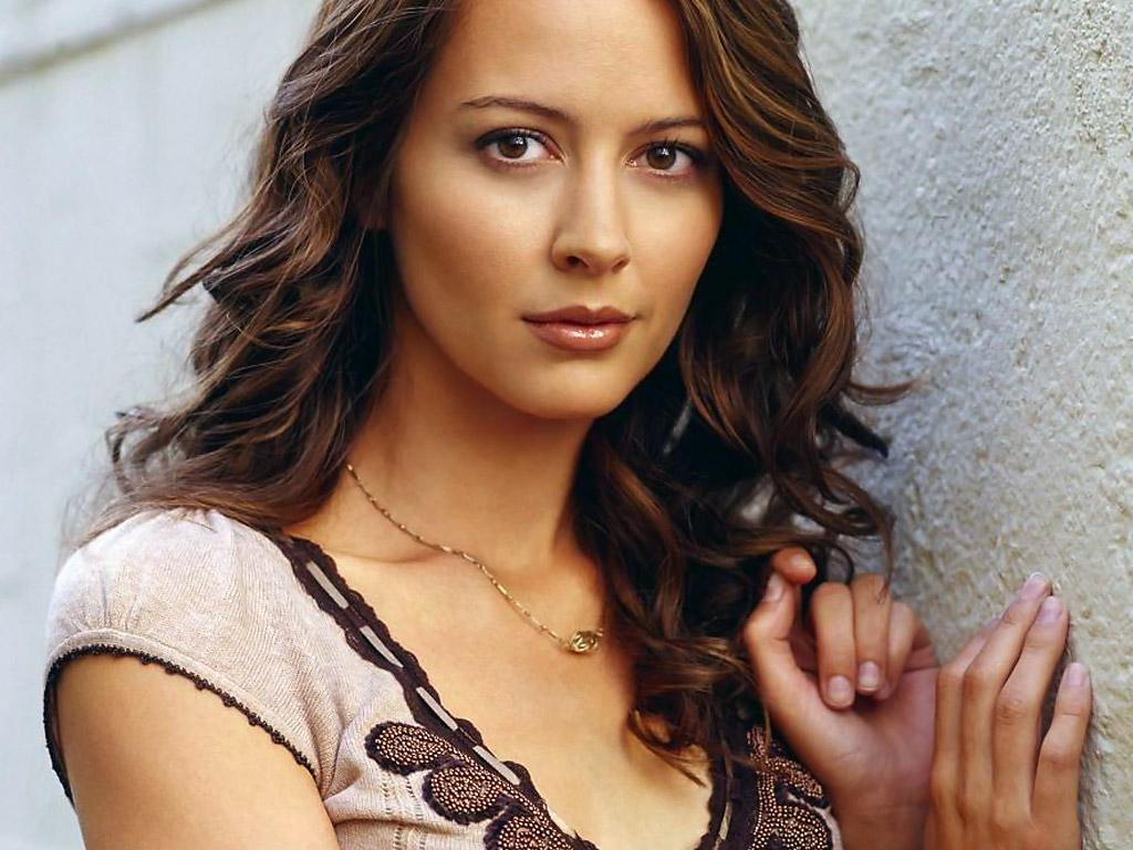 1024x768 - Amy Acker Wallpapers 31