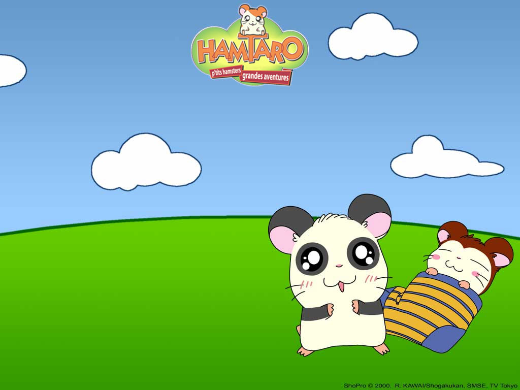 1024x768 - Hamtaro Background 34