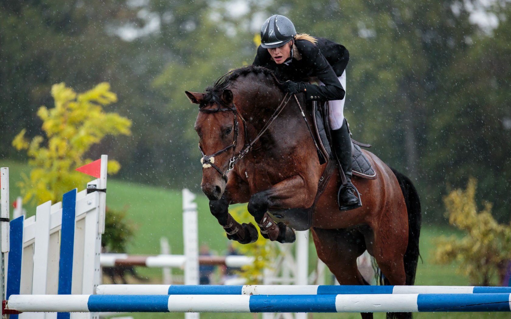 1680x1050 - Show Jumping Wallpapers 17