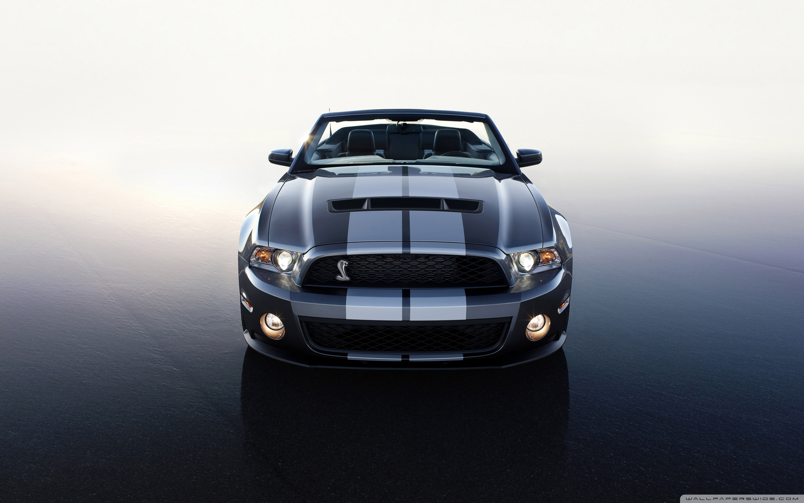 2560x1600 - Ford Convertible Wallpapers 24