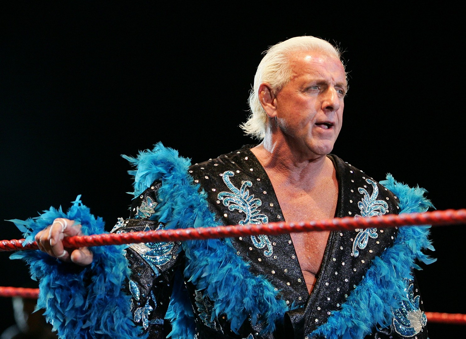 1481x1080 - Ric Flair Wallpapers 19