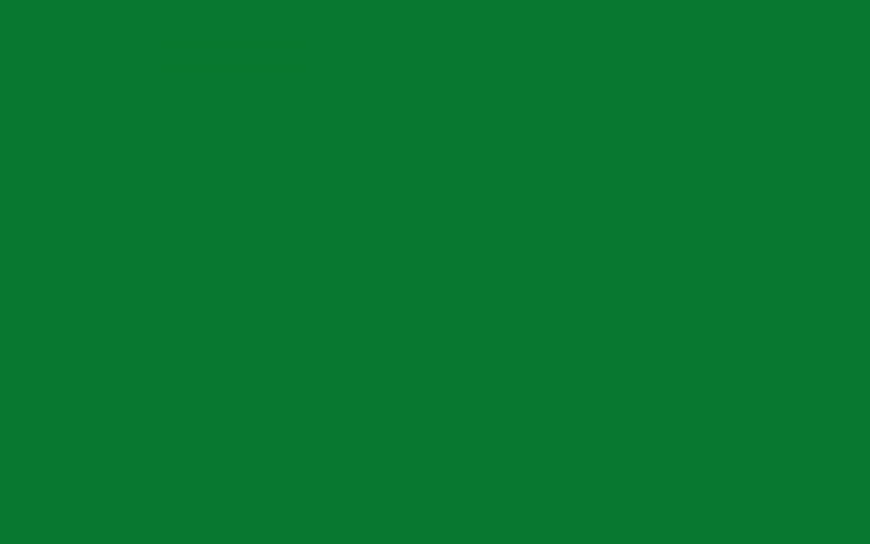 1728x1080 - Solid Green 34