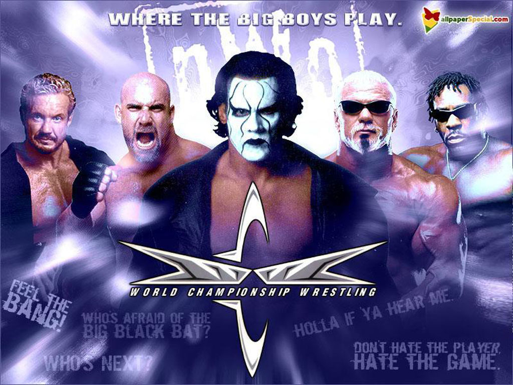 1024x768 - Wcw Wallpapers 5