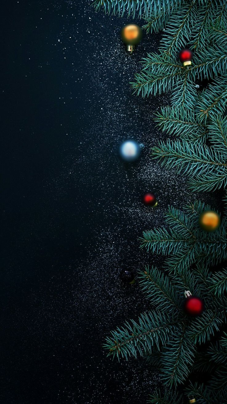 736x1308 - Wallpaper for Christmas 48