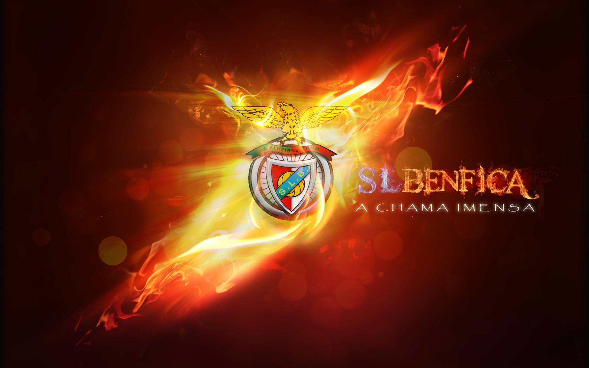 1920x1200 - S.L. Benfica Wallpapers 14