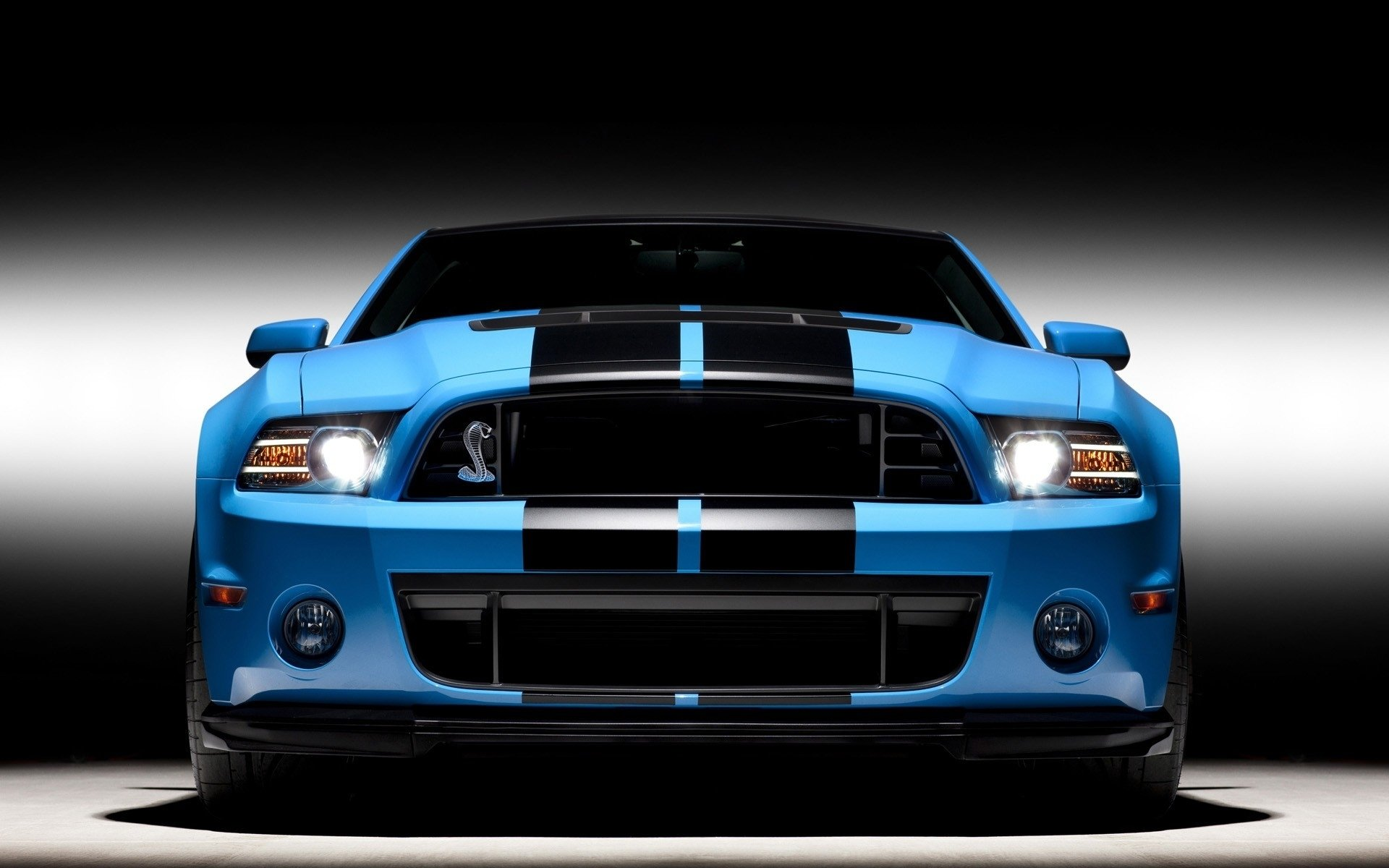 1920x1200 - Ford Mustang GT500 Wallpapers 19