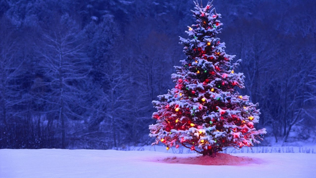 1280x720 - Wallpaper for Christmas 33