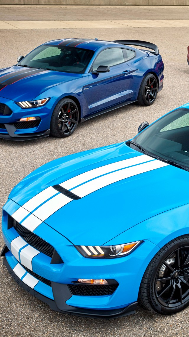 640x1138 - Shelby Mustang GT 350 Wallpapers 15