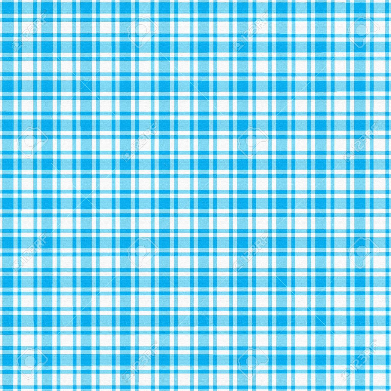 1300x1300 - Blue Plaid 6
