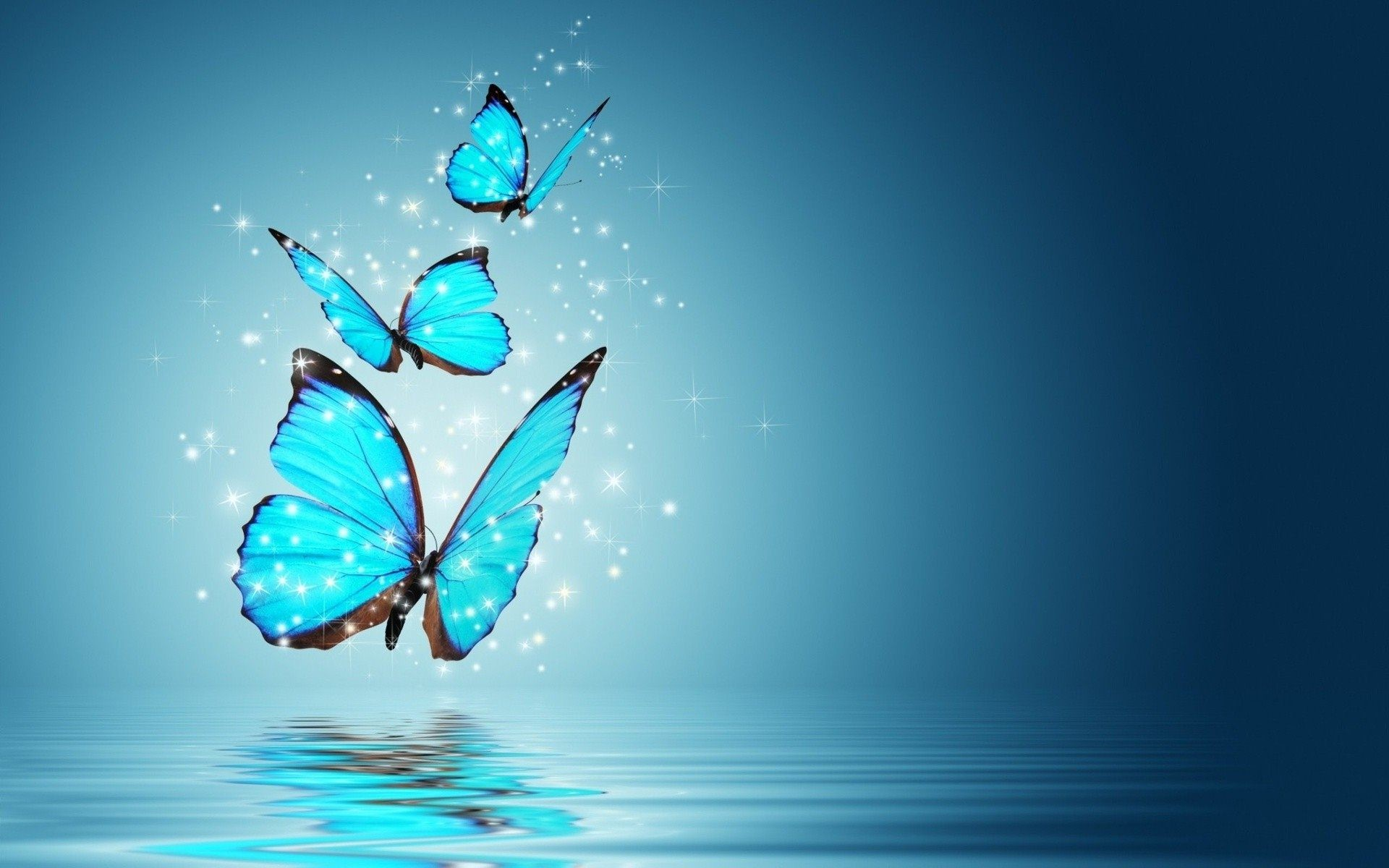 1920x1200 - Pretty Butterfly Backgrounds 2