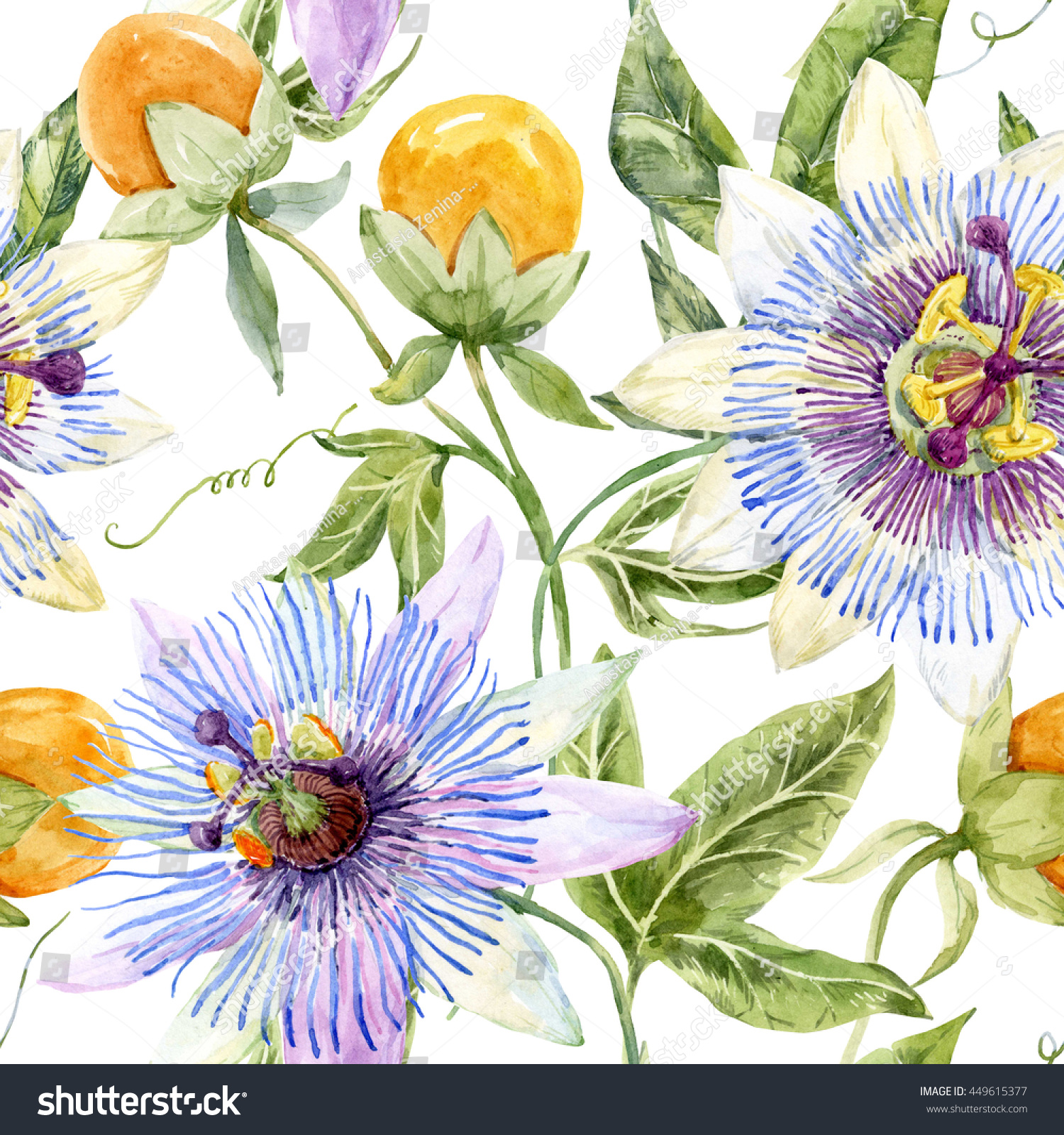 1500x1600 - Passion Flower Wallpapers 15