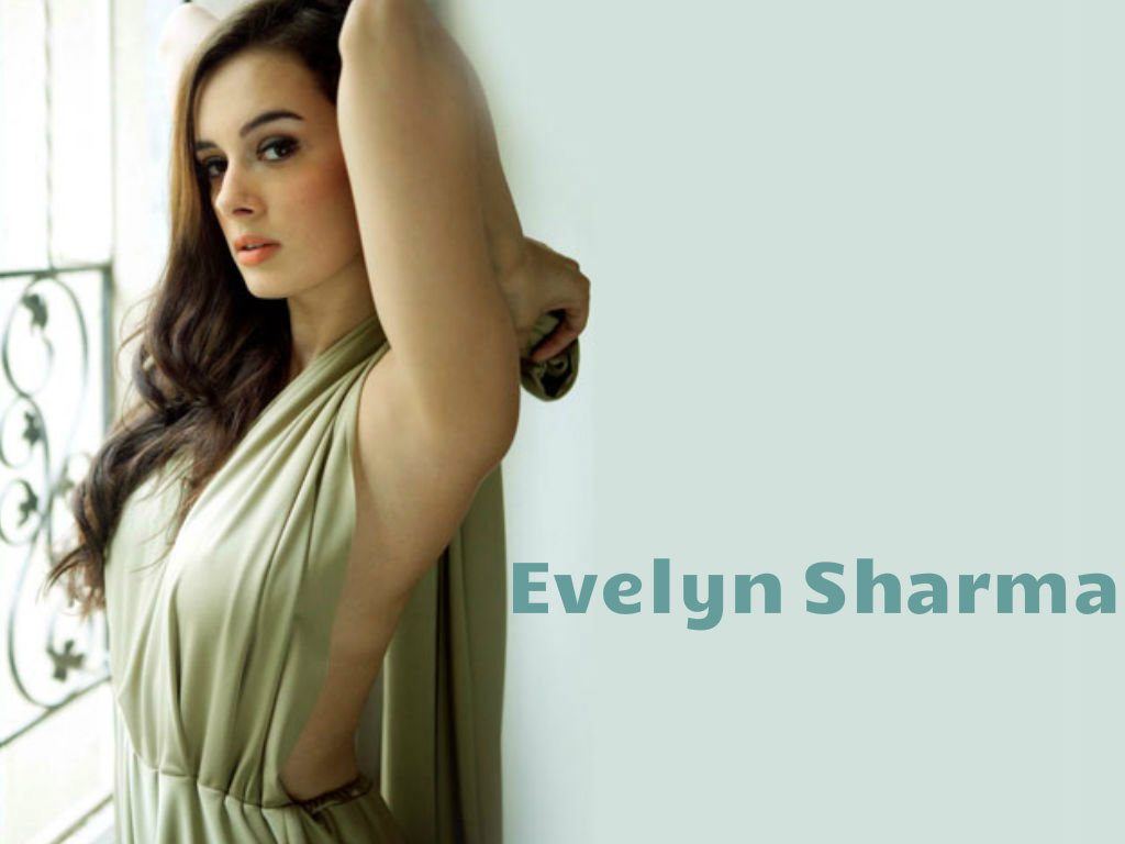 1024x768 - Evelyn Sharma Wallpapers 16