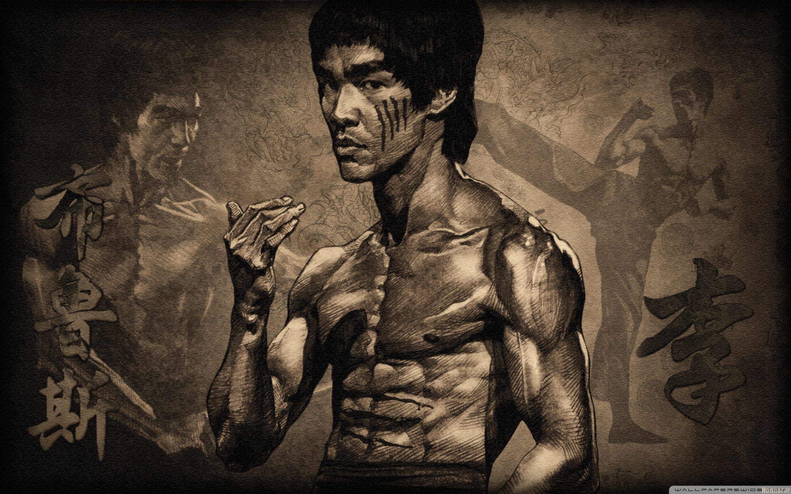 2560x1600 - Bruce Lee Wallpapers 25