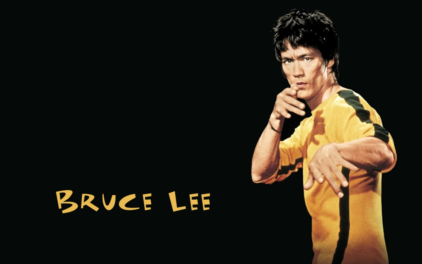1600x1000 - Bruce Lee Wallpapers 15