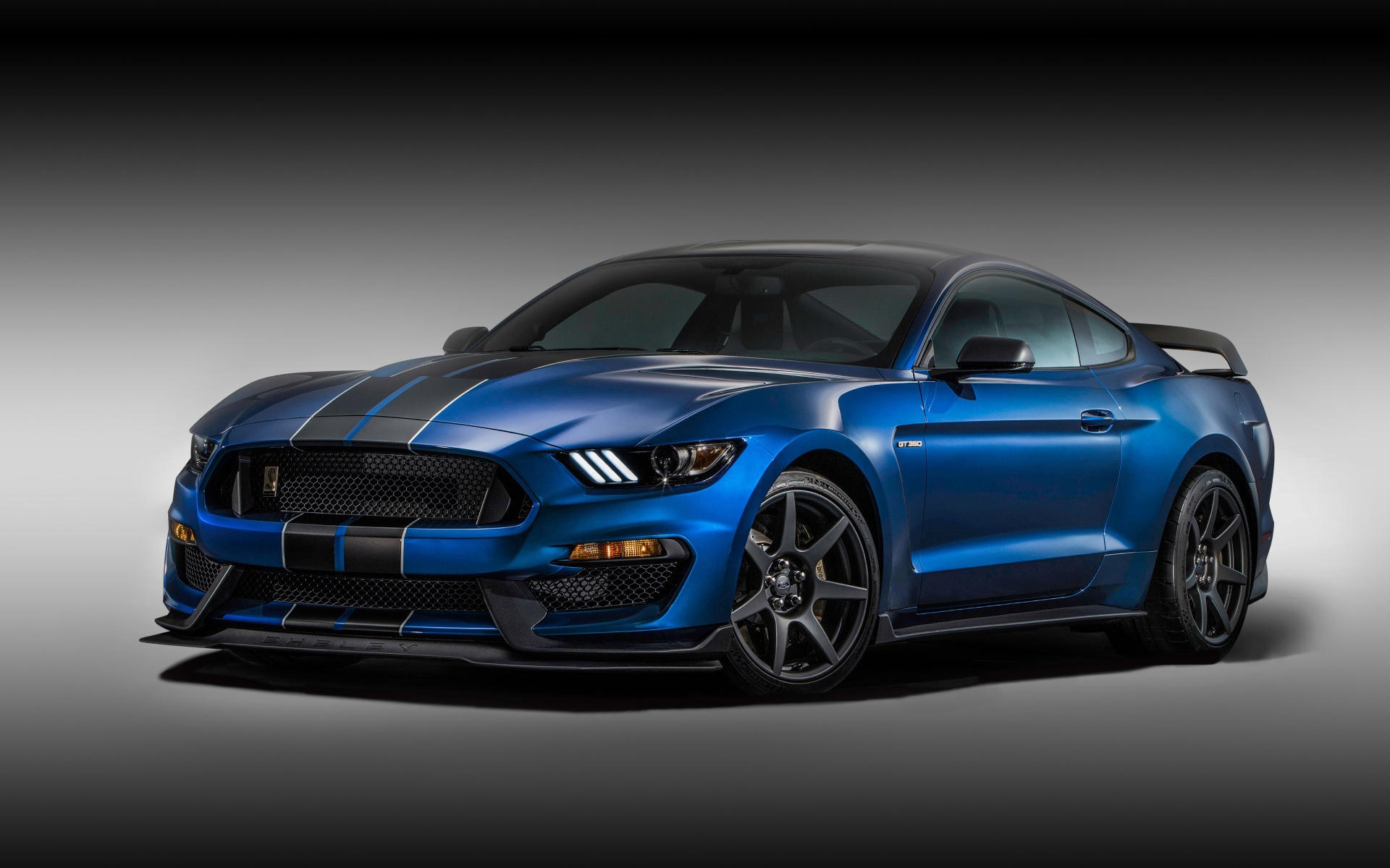 1920x1200 - Shelby Mustang GT 350 Wallpapers 19
