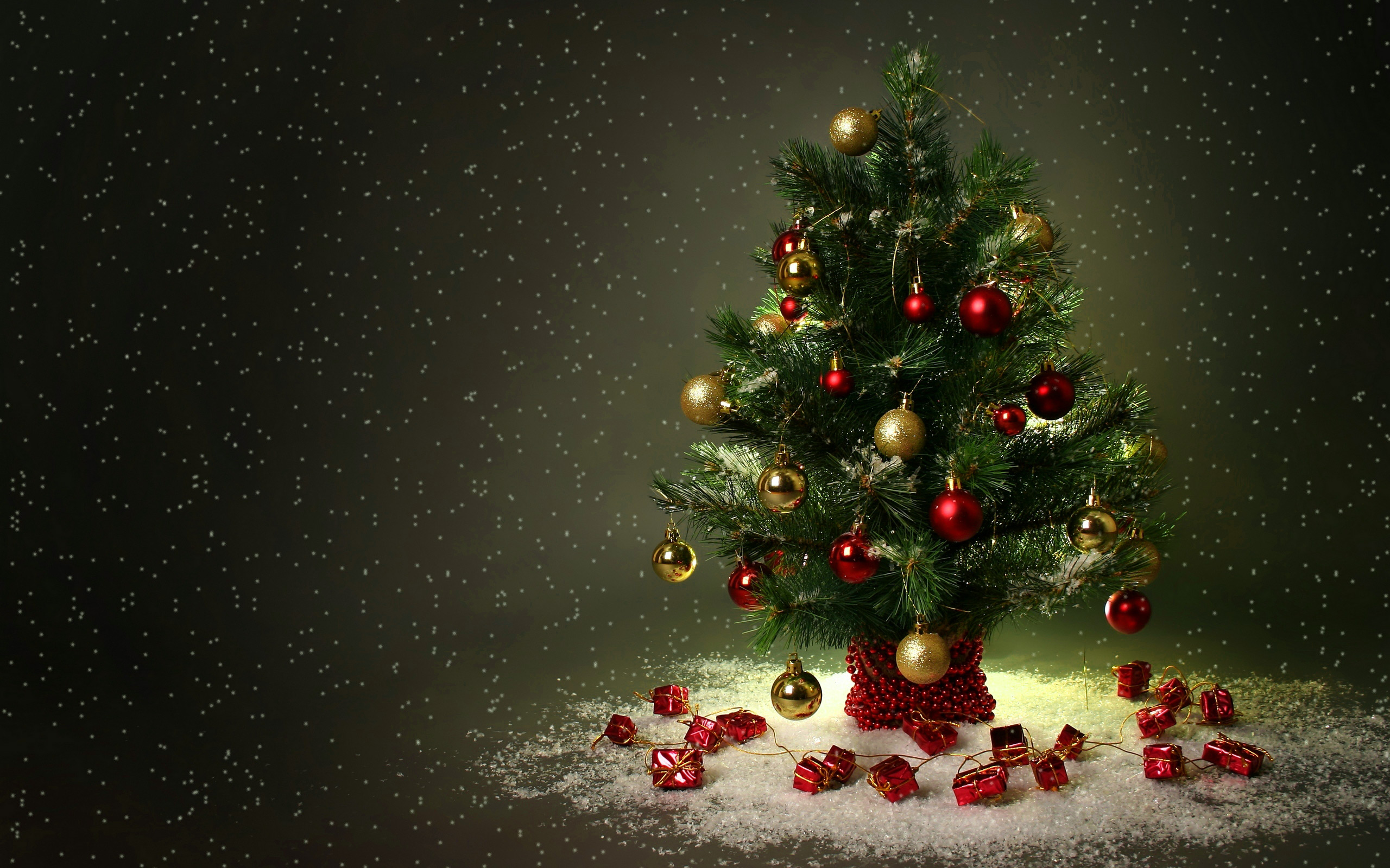 2560x1600 - Christmas Trees Backgrounds 3