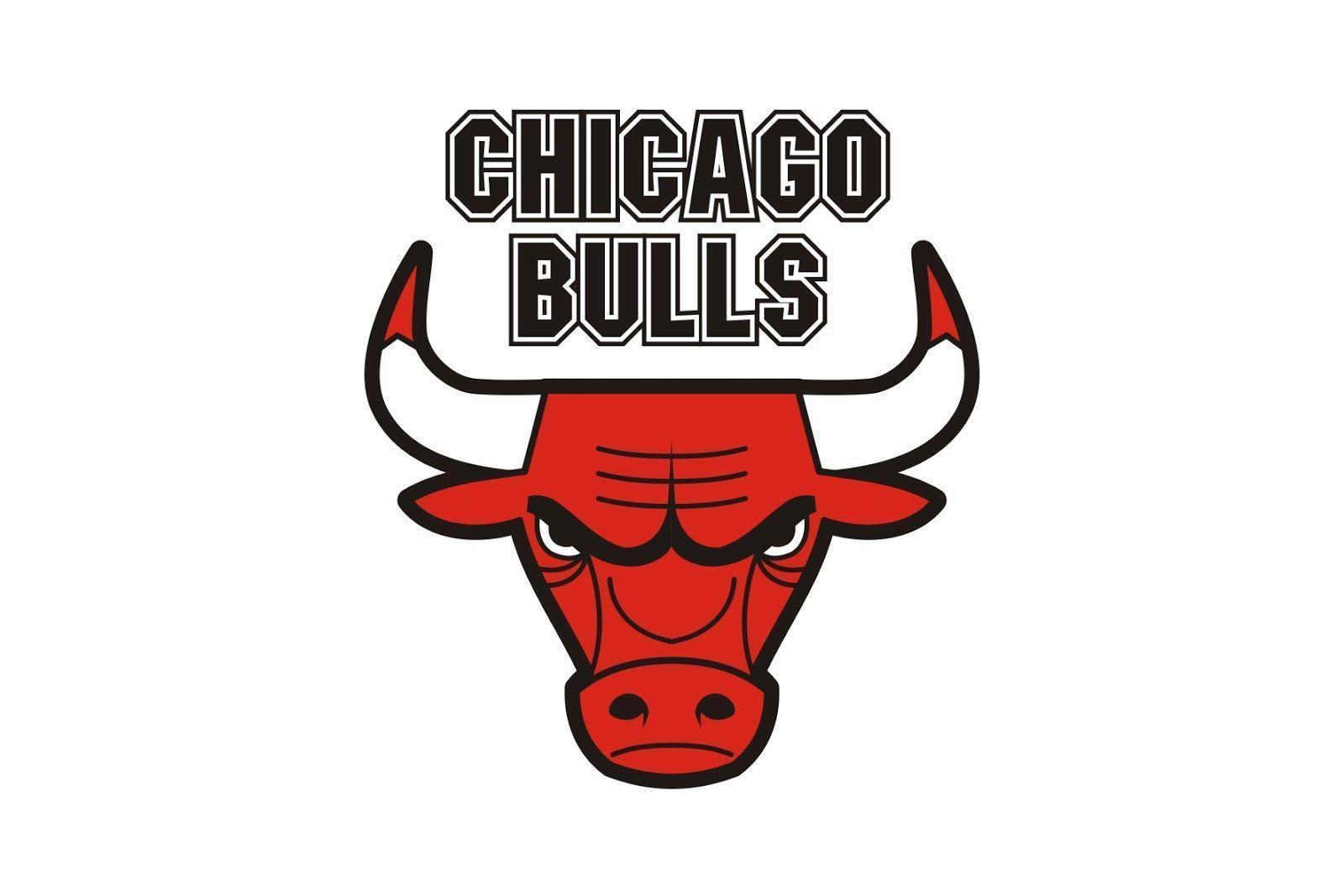 1600x1067 - Chicago Bulls HD 19