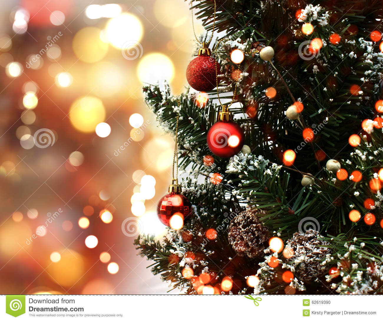 1300x1091 - Christmas Trees Backgrounds 14