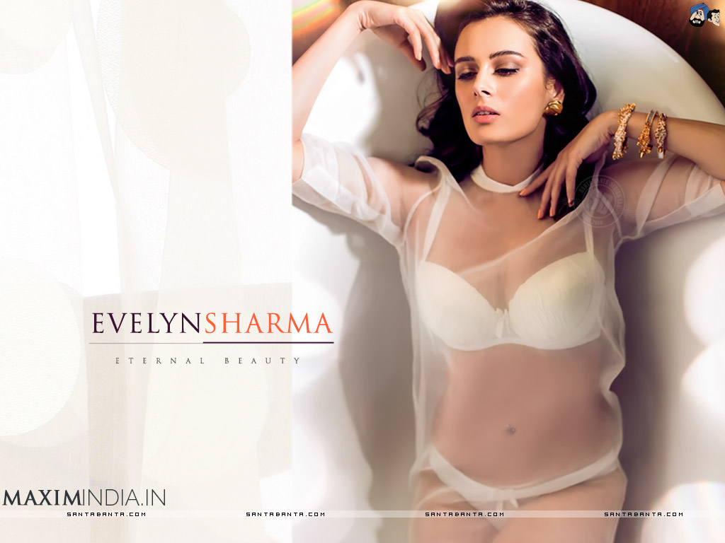 1024x768 - Evelyn Sharma Wallpapers 37